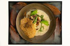Field mushroom vegetarian dish, The Regent Room Vegetarian Dish, Luxury Accommodation, Contemporary Decor, Stuffed Mushrooms, Dishes, Ethnic Recipes, Food, Stuff Mushrooms, Tablewares