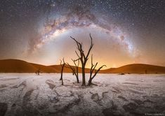 Milky Way over Deadvlei in Namibia