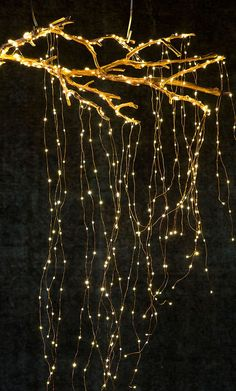 Stargazer Cascade Falls Lights, Plug-In by Anthropologie in Brown, Lighting… – Outdoor Christmas Lights House Decorations Hanging Christmas Lights, Holiday Lights, Outdoor Christmas, Christmas Lights Wedding, Merry Christmas, Christmas Trends, Christmas 2017, Xmas, Light Decorations