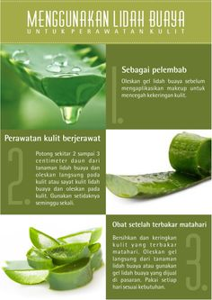 New nature face aloe vera Ideas Face Skin Care, Diy Skin Care, Skin Care Tips, Beauty Tips For Hair, Health And Beauty Tips, Beauty Tricks, Healthy Beauty, Healthy Tips, Shops