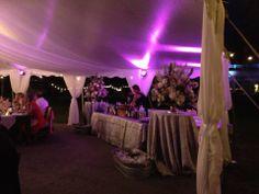 The City Florist Design; Ebb Tide Tent and Party Rentals Pole Tent