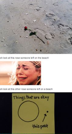 Things that are okay... Doctor Who A Rose left on a beach