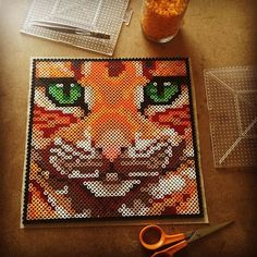 Kitty perler beads by capriciousarts