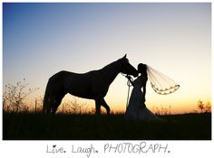 Bridal Session Horse Silhouette