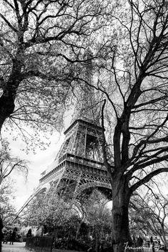 Paris by Francesco Stingi on 500px