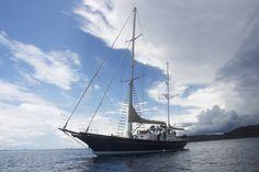 11 June Sea Shepherd's R/V Martin Sheen docks at Costa Rica's central Pacific for research of coastal marine ecosystems. West Coast Australia, Sea Shepherd, Marine Ecosystem, Martin Sheen, 4 Months, Costa Rica, Sailing Ships, Coastal, Boats