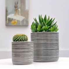 Image result for decoration with plants