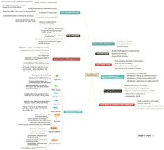 Post with 0 votes and 6378 views. A Mindmap of Buddhist Teachings. I hope you find it valuable. Buddhist Wisdom, Buddhist Teachings, Buddha Buddhism, Things To Know, I Hope You, Great Quotes, Wise Words, Meditation, Spirituality