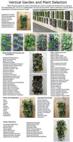 Vertical garden plant selection
