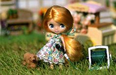 the 2010 Blythe photo contest -8- | Blythe Doll Club