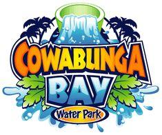 Logo design case study: Cowabunga Bay Water Park