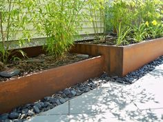 Rusted Steel Planters and bamboo - contemporary - landscape - seattle - Greener Living Solutions Inc Metal Landscape Edging, Steel Garden Edging, Landscape Borders, Landscape Plans, Landscape Design, Steel Edging, Bamboo Planter, Corten Steel Planters, Metal Planters