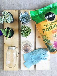 DIY Mason Jar Succulents || Town Lifestyle + Design || The perfect homemade Mother's Day gift for those moms with a green thumb. Easy Do It Yourself Mason Jar Cactus + Succulent planter