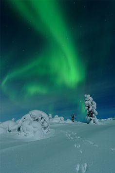 Salamapaja - Photography & Tours in Finland, Landscapes, Aurora National Geographic Photo Contest, National Geographic Travel, Aurora Borealis, Helsinki, Winter Photography, Travel Photography, Polar Night, Arctic Circle, Winter Landscape