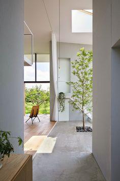 Japon / Un arbre dans la maison / pin maudjesstyling