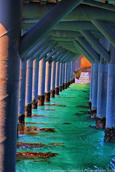 Underside of the Pier, Bechers Bay, Santa Rosa Island Channel Islands National Park, CA