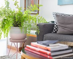08-decoracao-apartamento-plantas-suporte-marca-selvvva-rosa