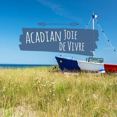 We love our Acadian roots. And it shows! Everywhere you look in New Brunswick you'll find a cheery mix of Acadian joie d'vivre - from cuisine to celebrations. Come join the fun!