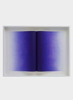 Anish Kapoor . folds (blue variant), 2014