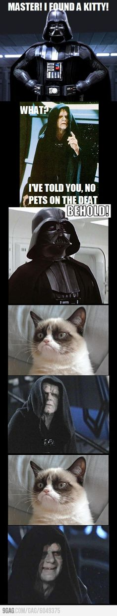 honestly I can't stand the grumpy kitty phenomenon, but when you add it to Star Wars I'll follow.