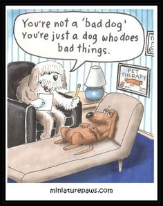 Et ole paha koira, ei sellaisia. Social Work Humor, Mental Health Humor, Dog Jokes, Dog Humor, Nurse Humor, Therapy Humor, Psychology Humor, Dog Comics, Cartoon Dog