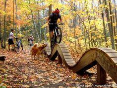 Mountain Biking in Michigan