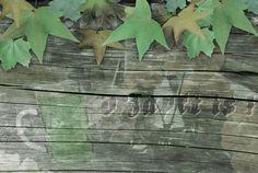 Oktoberfest Grunge Grün Holzwand
