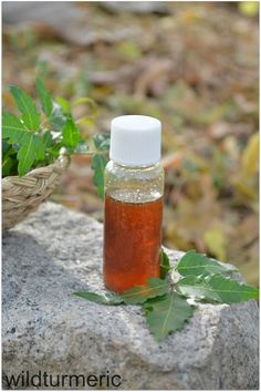 Neem oil: I would suggest always stocking pure neem oil at home to treat eczema, scabies, acne, dandruff, lice, to prevent mosquito bites, as a natural pesticide and to treat fleas in dogs (all the methods given)! I hope you will give these natural methods a try....