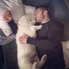tavi-castro:  Only a week Away and im already missing my fluffballs   @yukiwolfbear  #wolf #whitewolf #fluffy #cute