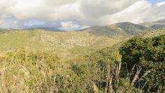 Parc Natural del Garraf #garraf #natura #natura #landscape #paisaje #foto #photo #catalunya #catalonia