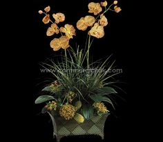 Nothing is more prettier than this peach-orange and burgundy Orchid arrangement.