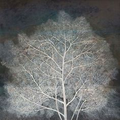 Portraits of Trees: Paintings by Pang Yun