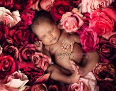 Baby photo - In a Bed of Roses