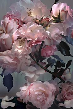 Ideas Flowers Photography Peonies Romantic For 2019 Pink Tumblr, Pink Roses, Pink Flowers, Coral Peonies, Tea Roses, Exotic Flowers, Yellow Roses, Top Photographers, Arte Floral
