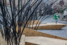 TreeIT – An interactive environment to rehabilitate Lake Vico --- Daytime of that one from before