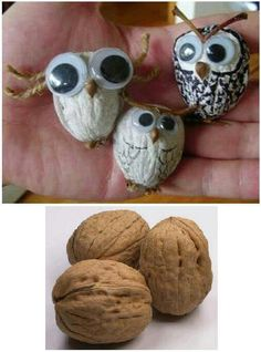 Re cool jaja Manualidades.remind me of Midge Gibbons the fairs we used to do together. Owl Crafts, Easy Crafts, Diy And Crafts, Arts And Crafts, Animal Crafts For Kids, Diy For Kids, Walnut Shell Crafts, Pine Cone Crafts, Nature Crafts