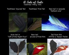 A Tale of Tails ~ Toothless Style by lilgerndt.deviantart.com on @deviantART
