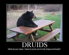 Druids: What do you mean, I have to come out of wild shape eventually?