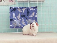 Guinea Pig Hay Bag / Guinea Pig Hay Pouch /  Hay Sack / Mess Free / Purple Sparrows