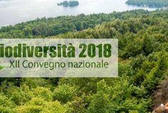 Biodiversità: XII Convegno Nazionale a Teramo, tutte le novità della ricerca per tutelare ed utilizzare al meglio il nostro capitale naturale - Foglie TV