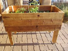 Portable herb/gardening box