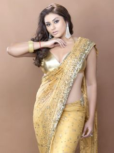 Plus size sarees are also available. Brown hair style goes well with the golden color shades with light kundan work on transparent saree