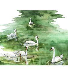 Swan Watercolor Painting  Print titled Swan