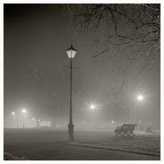 Autumn mist, night, Clapham Common. 2010.