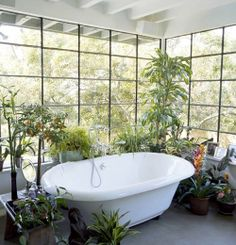 photography hippie room design Home flowers nature amazing Interior house bathroom bath Shower original garden decor incredible decoration plants modern bathtub Breathtaking Spiritual greenery tub indoor sink greenhouse hothouse klafamous Tropical Bathroom Decor, Bathroom Plants, Garden Bathroom, Garden Tub, Bathroom Bath, Bath Shower, Bathroom Flowers, Bathroom Green, Botanical Bathroom