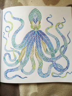 Mimic Octopus Millie Marottas Curious Creatures OctopusOctopus ArtAdult ColoringColouringColoring BooksCurious CreaturesColor