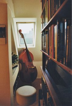 the double bass in the corner
