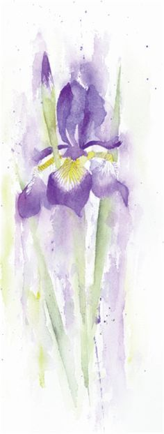 How to Paint an Iris in Watercolour with Rachel McNaughton #watercolorarts