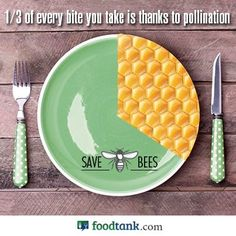 Think about it. #savethebees #pollenation #honeycolony #honeybees Via: http://on.fb.me/1tfcCRB