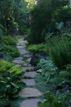 A narrow side yard becomes a fascinating journey | Fine Gardening photo gallery